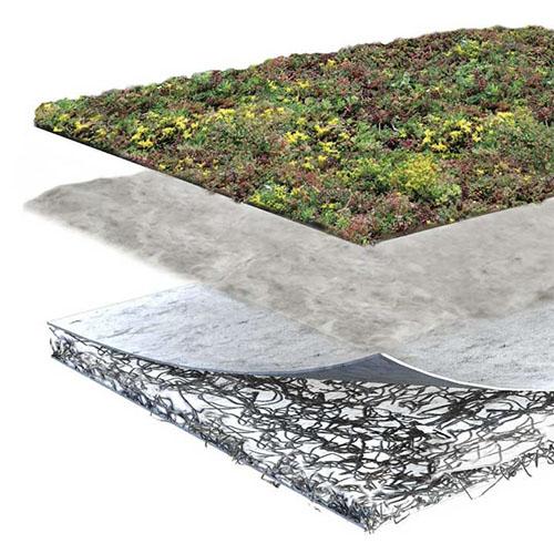 Pakket lagen sedum pakket premium voor groen daken